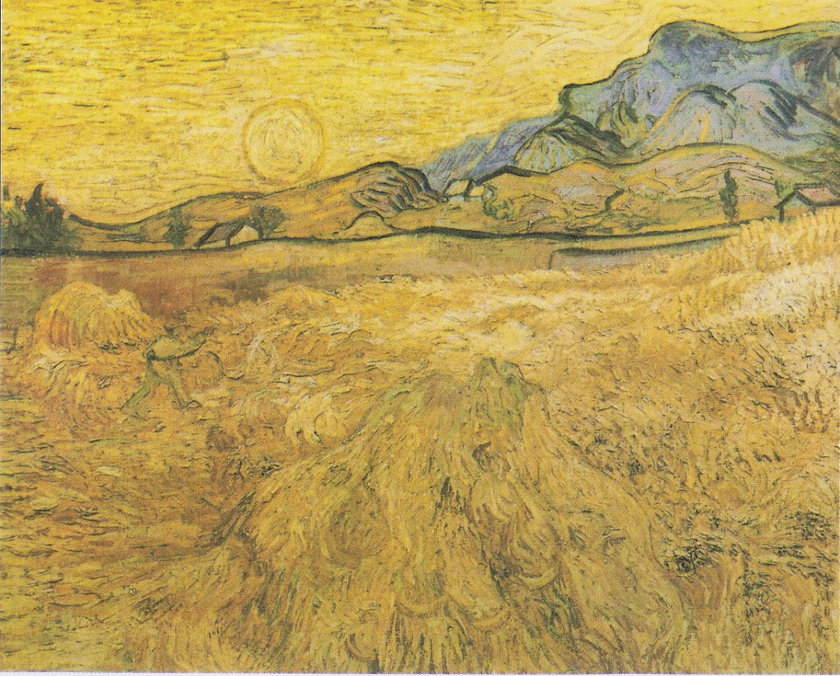 Image result for Saint remy wheat field that Vincent van Gogh painted